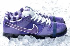 "Concepts x Nike SB Dunk Low ""Purple Lobster"" Revealed: Release Details"