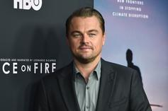 Leonardo DiCaprio Gets Hit In The Face With A Volleyball & The Internet Loves It