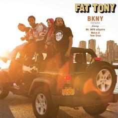 Fat Tony - BKNY (Remix)  Feat. Mr MFN eXquire, MeLo-X & Tom Cruz (Prod. By Tom Cruz)