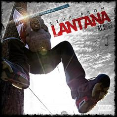 Lantana - Way Too Ready