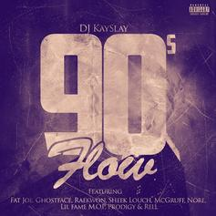 DJ Kay Slay - '90s Flow Feat. Fat Joe, Ghostface Killah, Raekwon, Sheek Louch, McGruff, N.O.R.E., Lil Fame, Prodigy & Rell