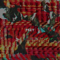 Doley Bernays - Prey  (Prod. By Matthew Burnett & Jordan Evans)