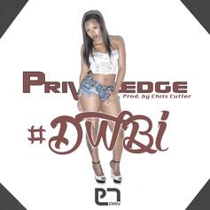 Privaledge - DWBI