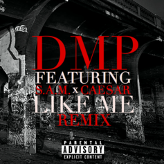 DMP - Like Me (Remix) Feat. Caesar & S.A.M.