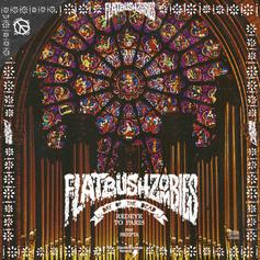 Flatbush Zombies - RedEye To Paris Feat. Skepta