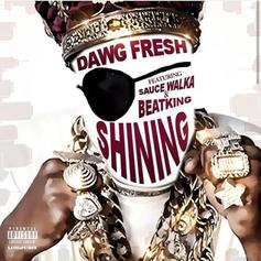 Sleep Dawg Fresh - Shining Feat. BeatKing & Sauce Walka