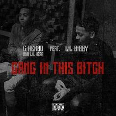 G Herbo - Gang In This Bitch Feat. Lil Bibby