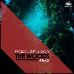 ProbCause - The Woods (Remix) Feat. Lil Dicky