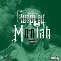 Gunplay - Moolah (Remix)