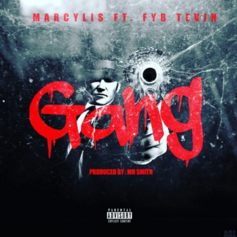 Marcylis - Gang (Prod. By FYB Tevin)