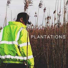 Julian Stephen - Plantations