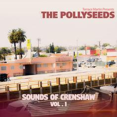 Terrace Martin & The Pollyseeds - Up & Away