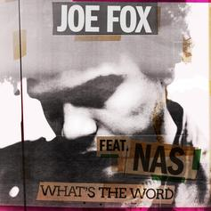 "Nas Jumps On Joe Fox's ""What's The Word"""