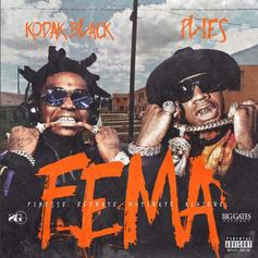 "Kodak Black & Plies Shine On New Mixtape ""F.E.M.A"""