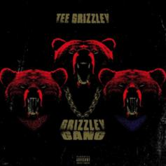 "Tee Grizzley Drops Off ""Grizzley Gang"""