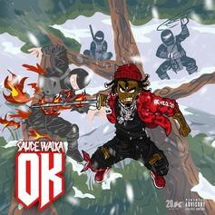 "Sauce Walka Drips Some Flava With ""OK"""