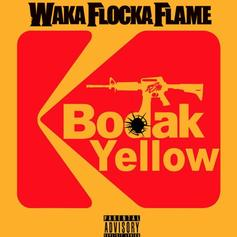 "Waka Flocka Bodies Cardi B's ""Bodak Yellow"""