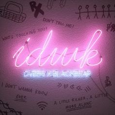 "DVBBS & blackbear Team Up For New Song ""IDWK"""