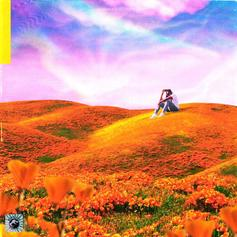 "Rexx Life Raj Releases New Project ""California Poppy"""