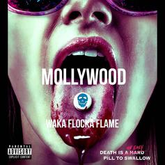"Waka Flocka Enlists Lil Wayne, Future, Gucci Mane For ""Mollywood"" Mixtape"