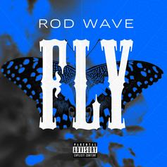 "Rod Wave Reflects On The Past, Present & Future On ""Fly"""