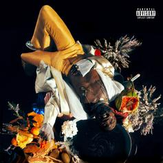 """Kojey Radical Makes A Promising Delivery On """"Cashmere Tears"""" Project"""
