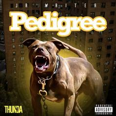 "JR Writer Goes In On His Haters On ""Pedigree"""
