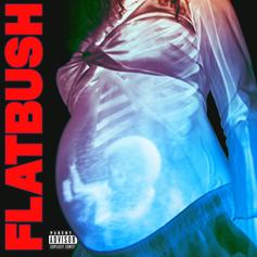 """Flatbush Zombies Link With James Blake For """"Afterlife"""""""
