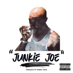 "Troy Ave Takes Aim At Joe Budden With ""Junkie Joe"" Diss Track"