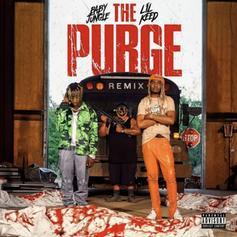 "Baby Jungle & Lil Keed Bring The Firepower On ""The Purge"" Remix"