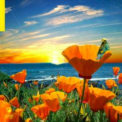 "Rexx Life Raj Drops Off ""California Poppy 2"""