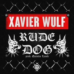 """Xavier Wulf Needs You To """"Hold Steady"""""""