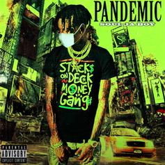 "Soulja Boy Reminds Us He's A Boss On ""Pandemic"""