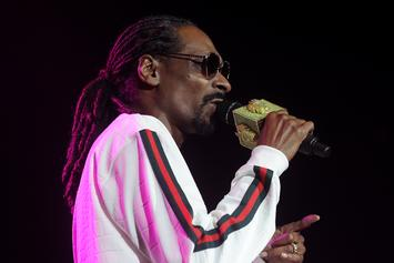 "Snoop Dogg Talks ""BUSH,"" Iggy Azalea & Macklemore In NY Times Profile"