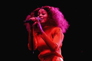 Solange, Anderson .Paak, SZA & More At AfroPunk 2017