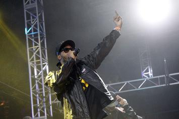 """RZA Files Lawsuit Against """"Woof-Tang Clan"""" Dog Walking Service"""