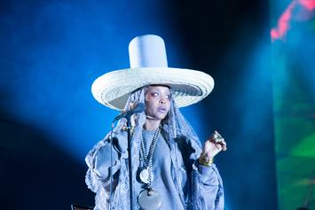 Erykah Badu Takes A Knee For Colin Kaepernick At Soul Train Awards