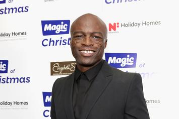 Seal Accused Of Sexual Battery By Former Neighbour