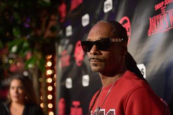 """Snoop Dogg's Netflix Series """"Coach Snoop"""" Is A Must-Watch For Inspiration"""