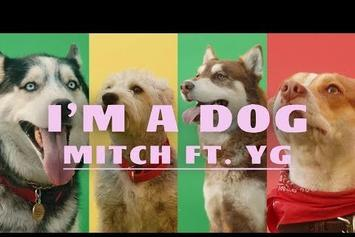 "YG & Mitch Are Surrounded By Furry Friends In ""I'm A Dog"" Video"