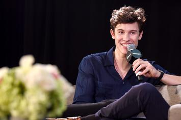 "Shawn Mendes Insists He's Not Gay: ""I Am A Little More Feminine"""