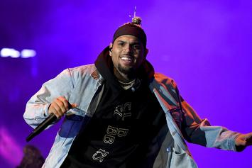 "Chris Brown Unveils ""Indigo"" Album Art & Confirms Release Date"