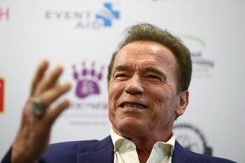 """Arnold Schwarzenegger Speaks On Drop Kick Attack: """"Nothing To Worry About"""""""
