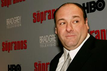"""The Sopranos"" Prequel Series Garners Interest From HBO Boss"