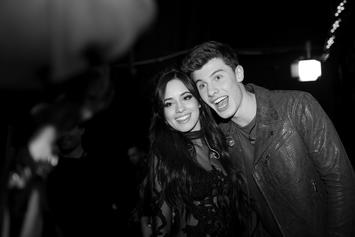Shawn Mendes & Camila Cabello Can't Keep Their Hands Off Each Other During Pool PDA