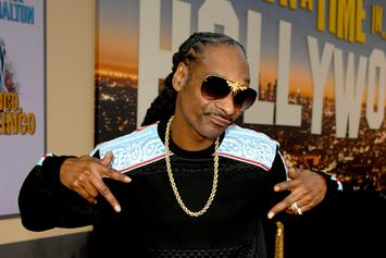 """Snoop Dogg Stars As Cousin It In Animated """"The Addams Family"""" Film"""