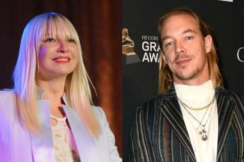 "Sia Propositioned Diplo For ""No-Strings Sex"" Relationship"
