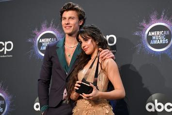 "Camila Cabello ""Exhausted"" By Shawn Mendes Relationship"