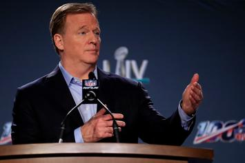 Roger Goodell's Statement Reportedly Surprised NFL Owners